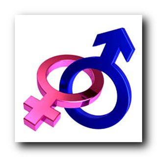 GenderDifferences