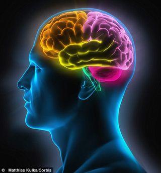 Mind-Brain1