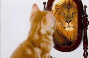 Kitten-Lion-Reflection