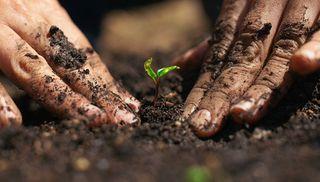 Joyful-Gardening