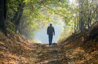 Walking-Nature