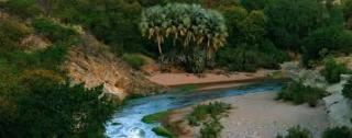 Hoanib-River